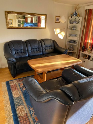 Odinių baldų komplektas